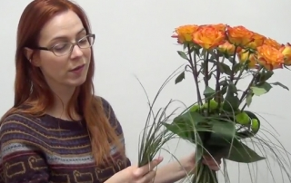 video-12-roses
