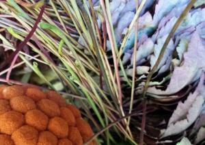 boule-et-feuilles-dautomne