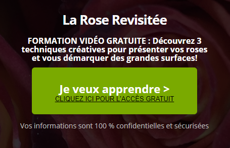 Roses-blog